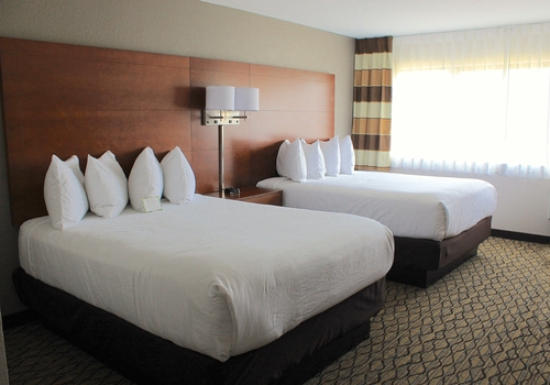 Transportation Available Group Hotel Booking Page 373 Of 489