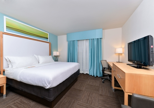 Holiday Inn Hotel & Suites Tampa N – Busch Gardens Area
