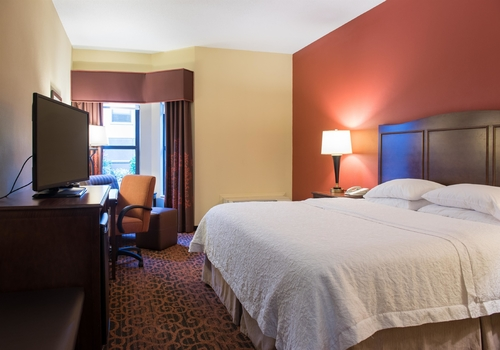 Hampton Inn & Suites Tampa-North